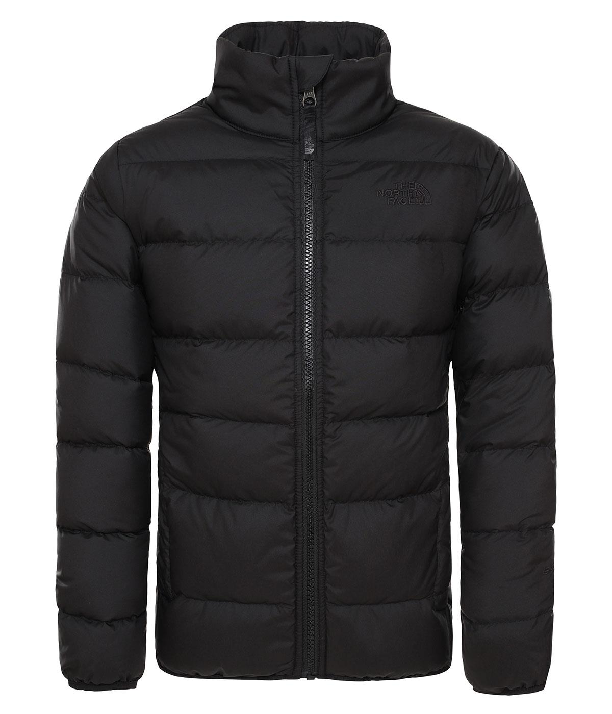 The Northface B Andes Ceket Nf00Chq6Kx81