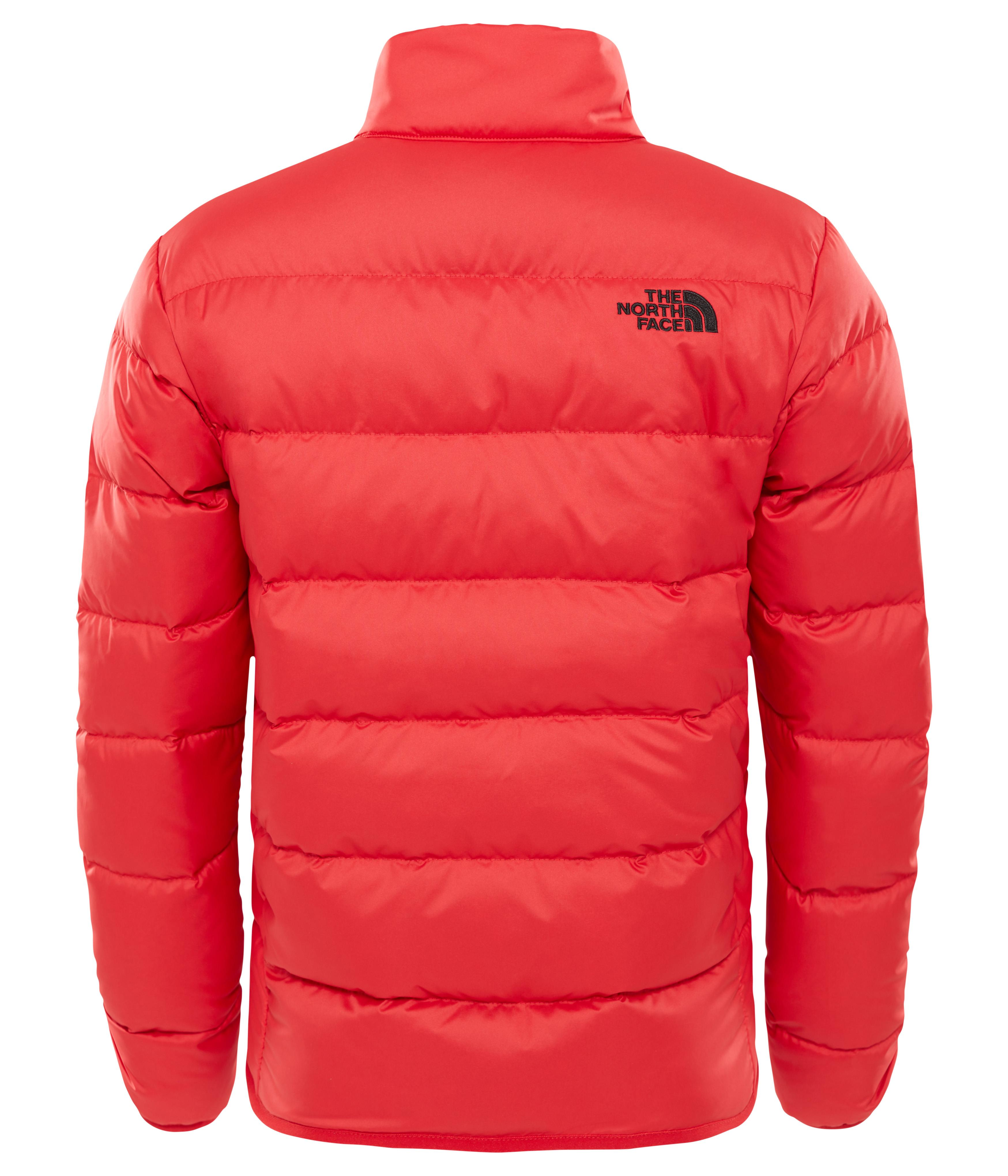 The North Face B Andes  Ceket