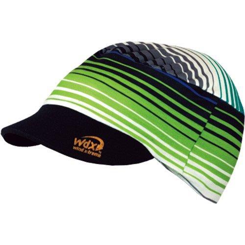 Wind Zebra Blue Bandana Wdw181
